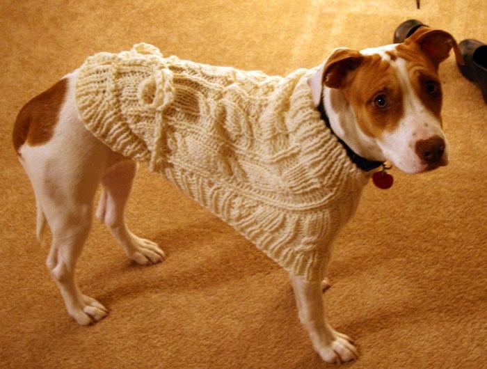 bindisweater